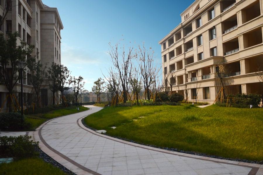 我们设计了以草坪为主的开阔轴线,经过欧式的拱形廊架即能看到开阔通图片